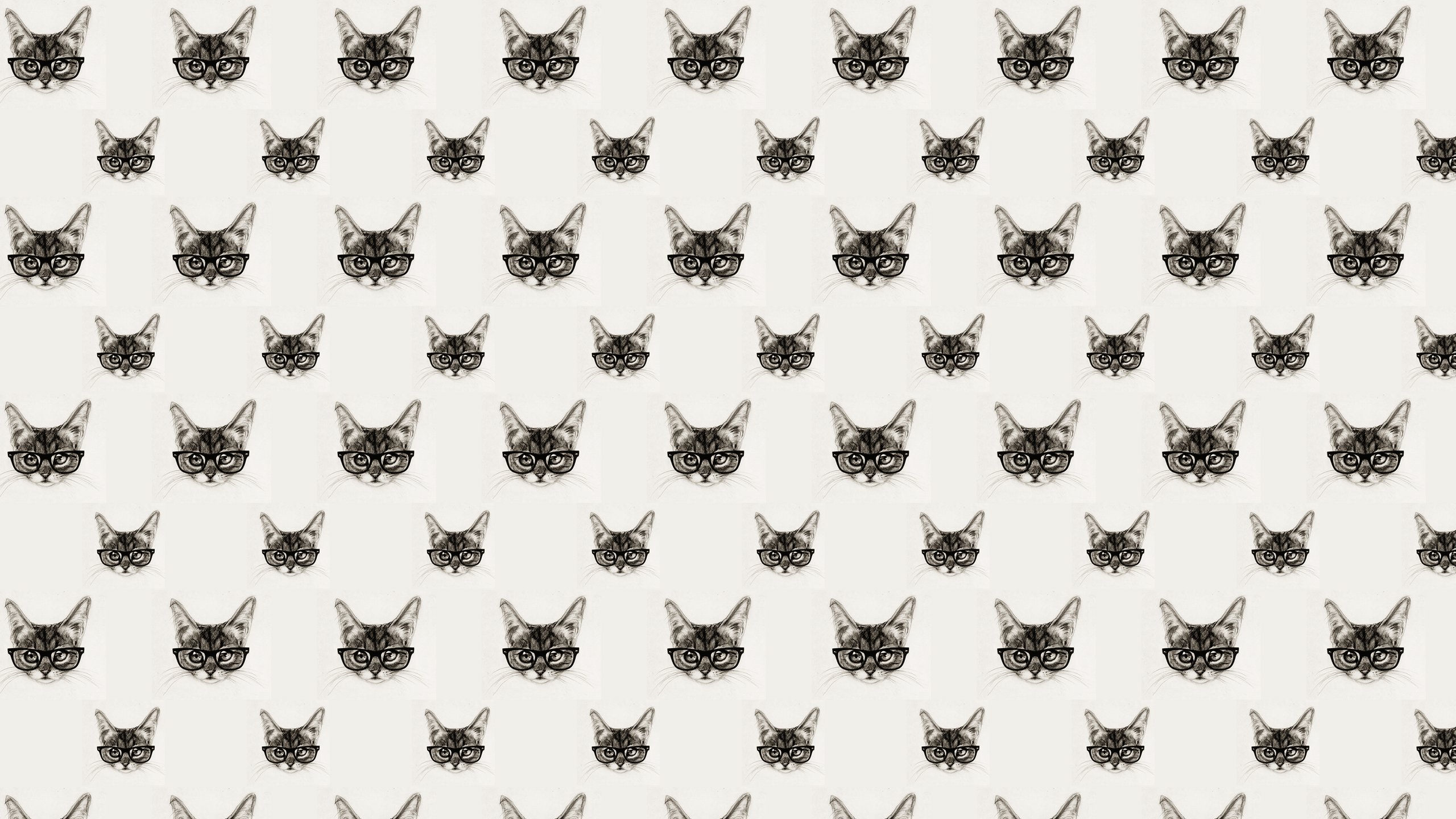 Cat Pattern Wallpapers Top Free Cat Pattern Backgrounds