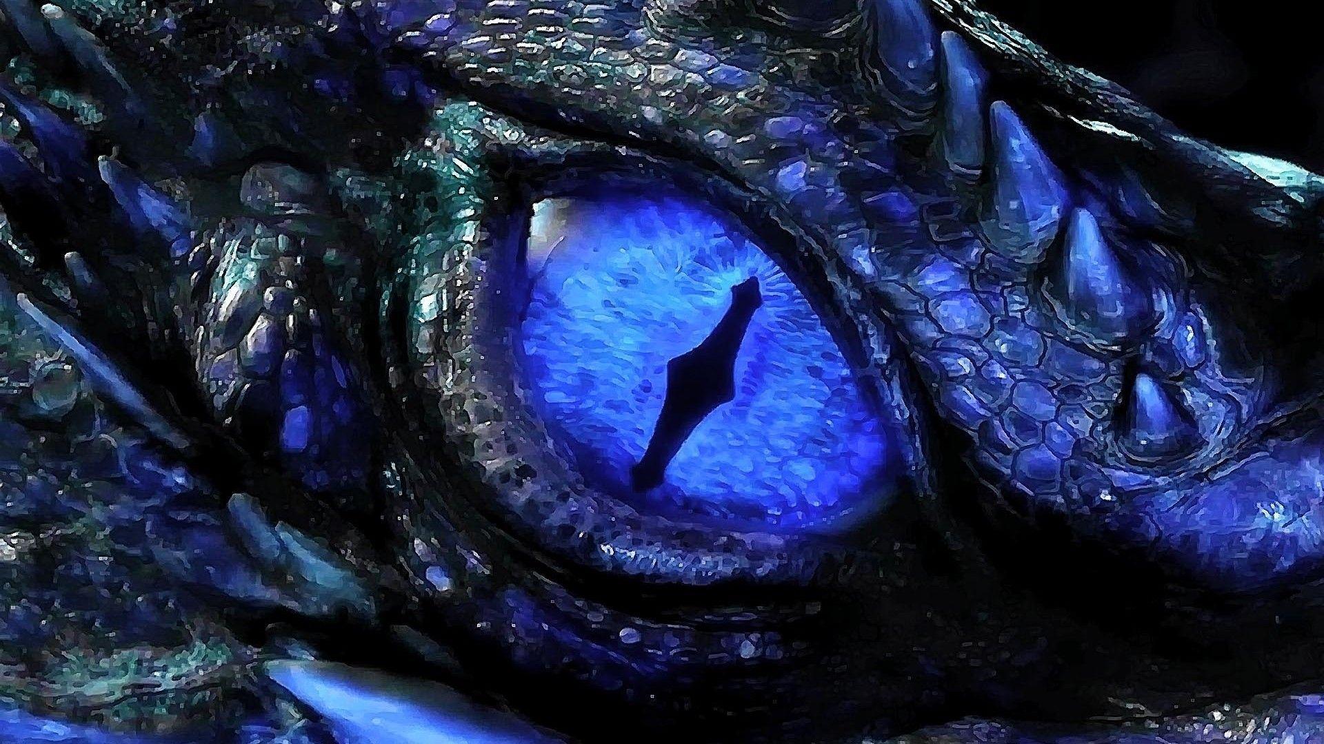 Eye Dragon Wallpapers Top Free Eye Dragon Backgrounds