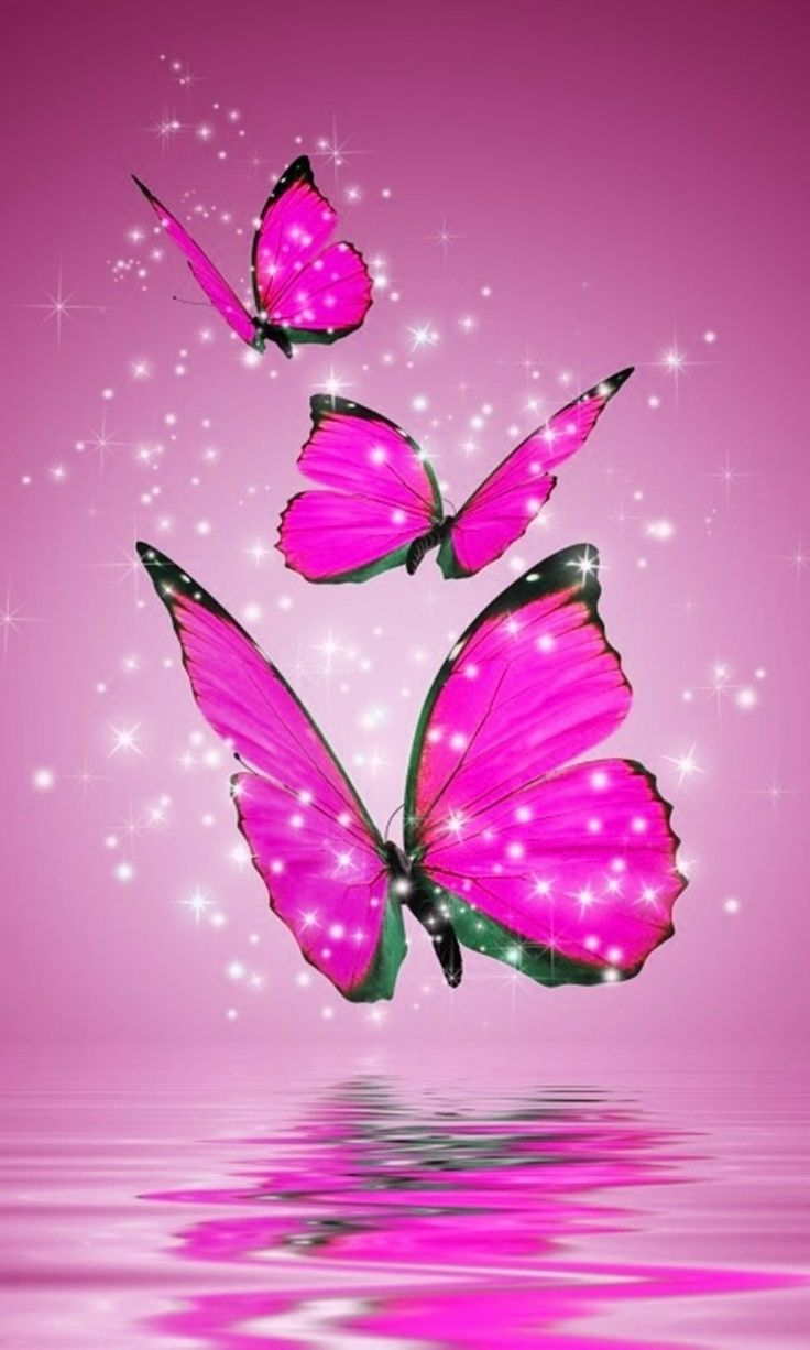 Butterfly Phone Wallpapers , Top Free Butterfly Phone