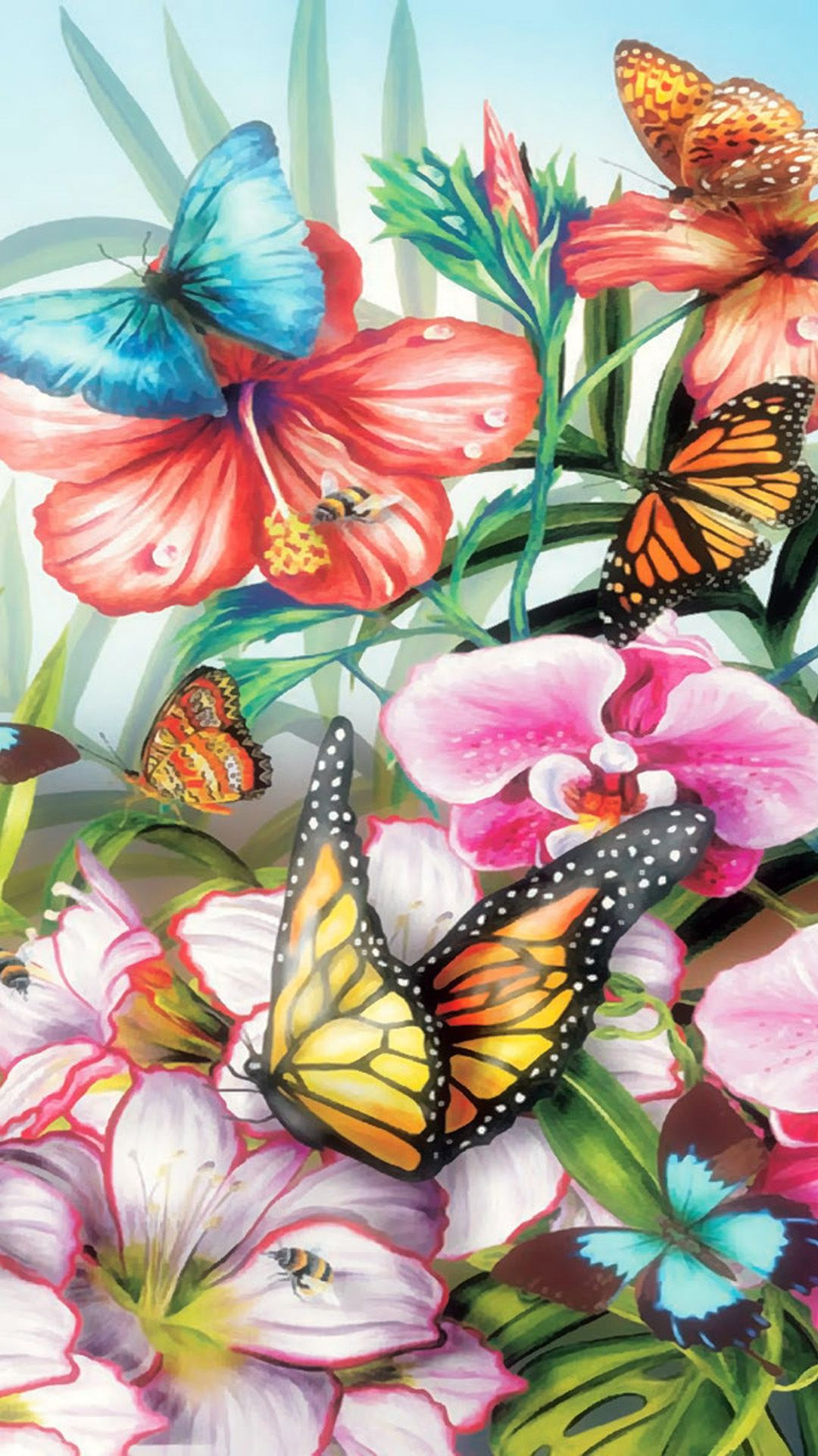 Butterfly Wallpapers - Top Free Butterfly Backgrounds ...