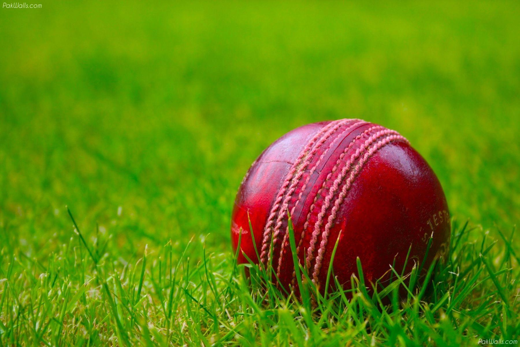 Cricket Wallpapers - Top Free Cricket