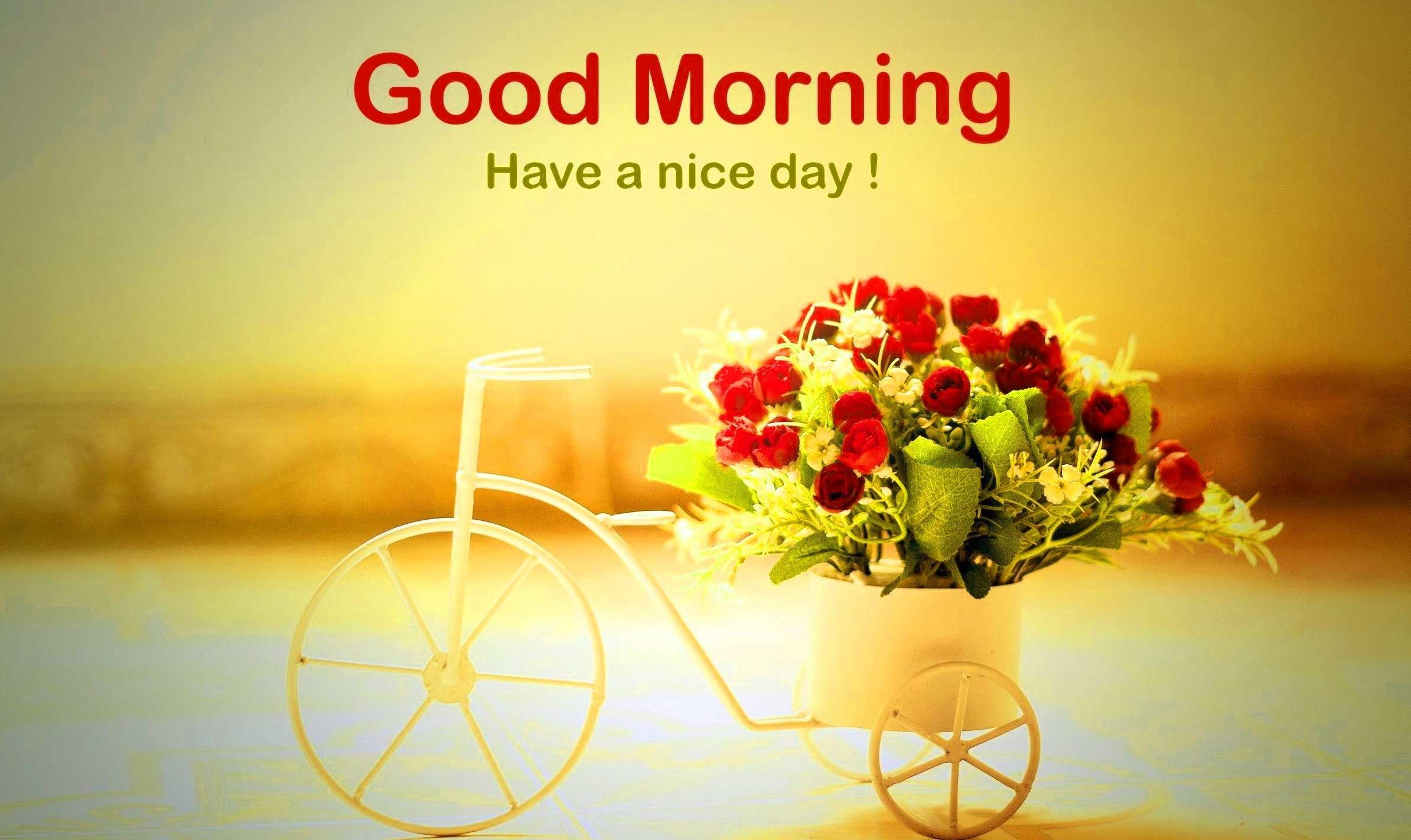 Good Morning Wallpapers Top Free Good Morning Backgrounds