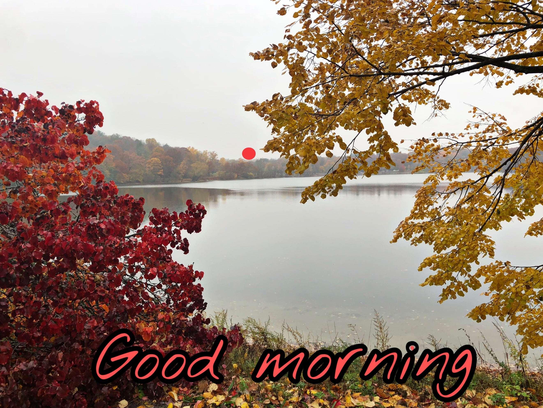 Good Morning Wallpapers - Top Free Good Morning
