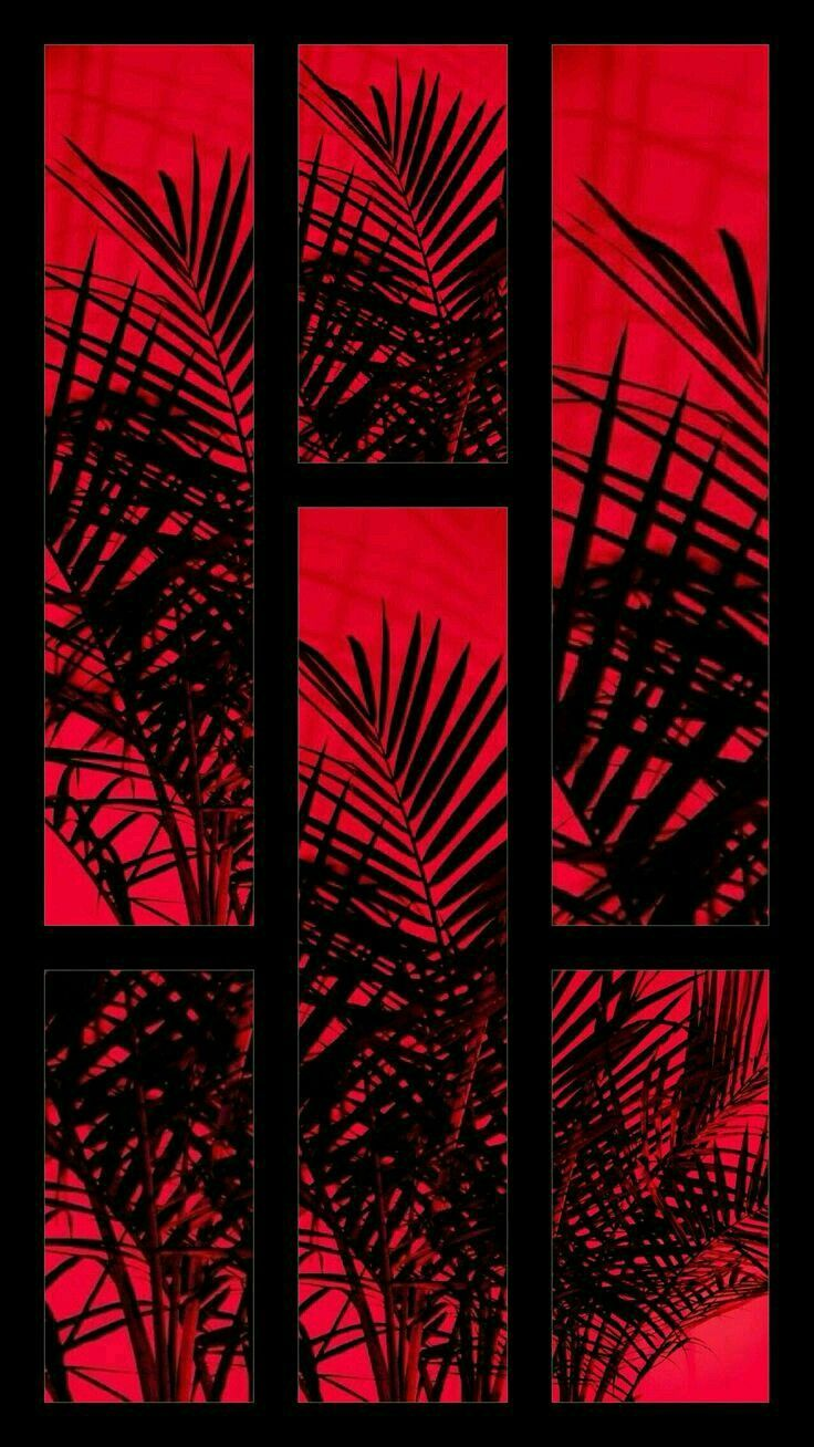 Red Black Aesthetic Wallpapers Top Free Red Black Aesthetic Backgrounds Wallpaperaccess