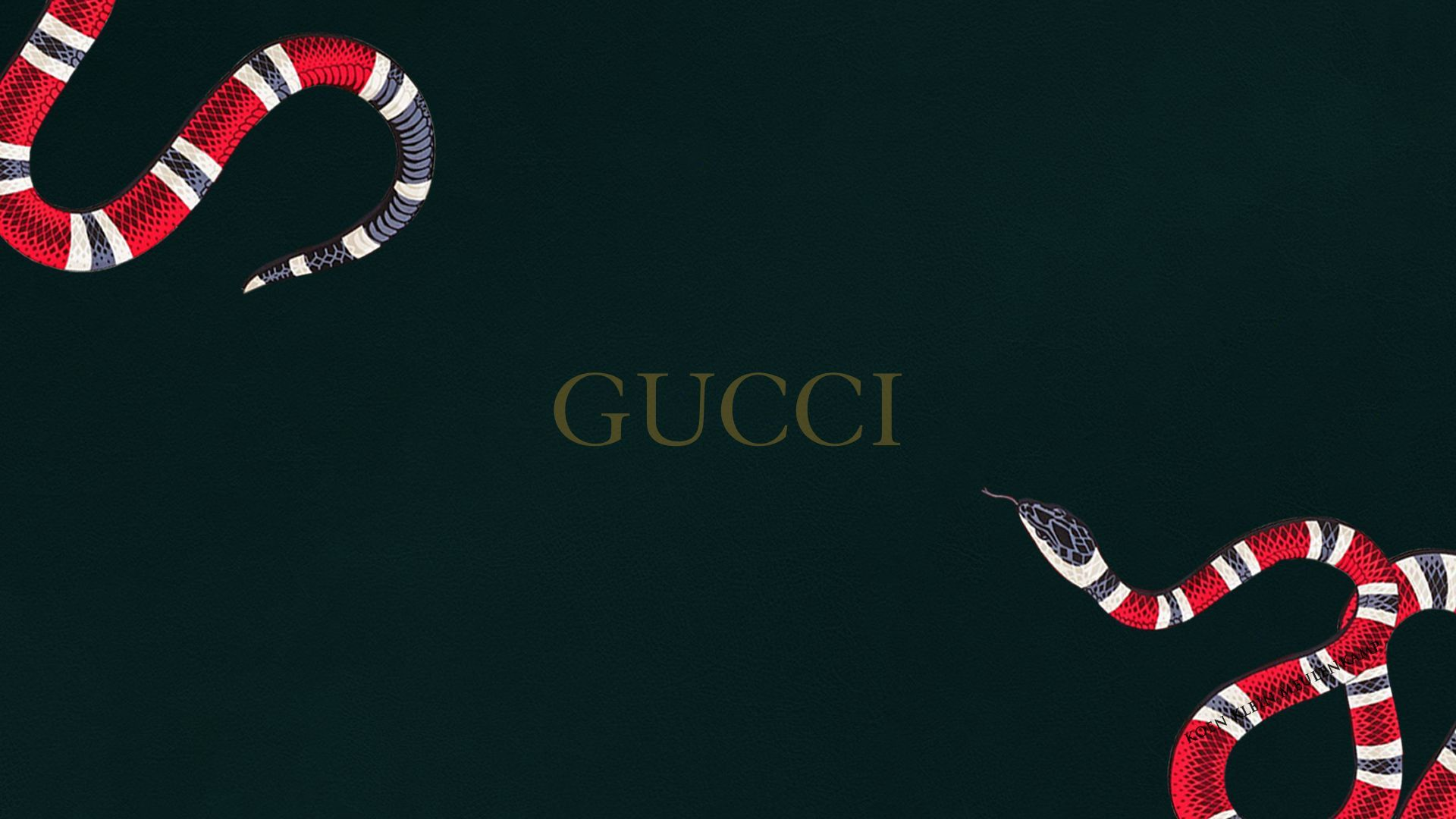 Gucci Snake Wallpapers , Top Free Gucci Snake Backgrounds