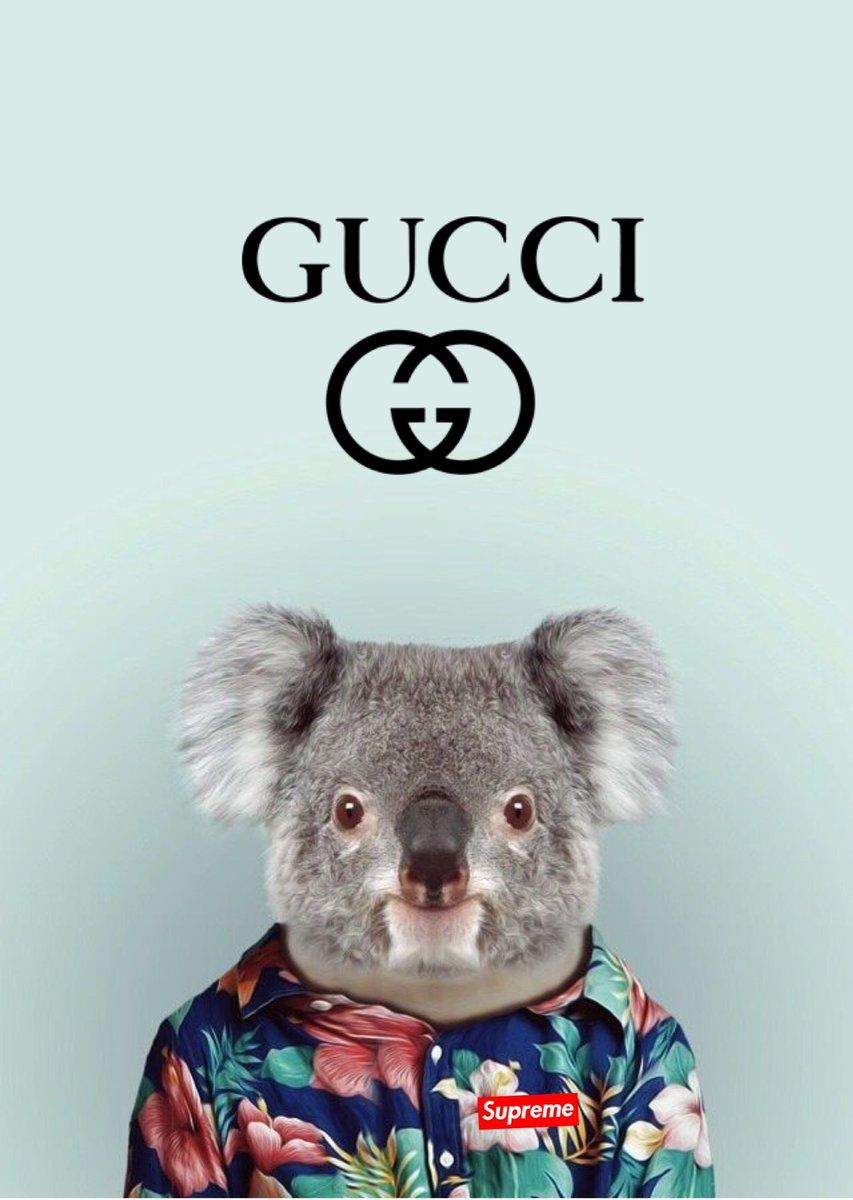 Gucci Iphone Wallpapers Top Free Gucci Iphone Backgrounds