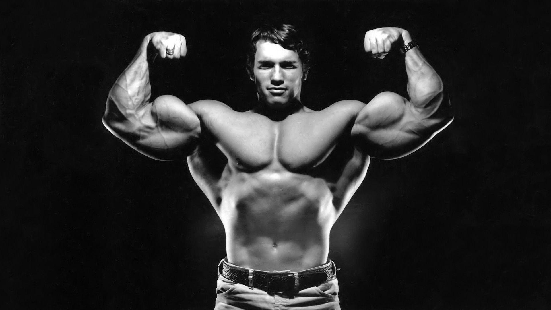 Arnold Schwarzenegger Wallpapers Top Free Arnold