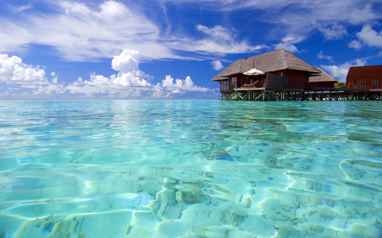 Maldives Beach Wallpapers Top Free Maldives Beach