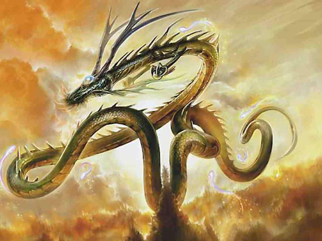 God Dragon Wallpapers Top Free God Dragon Backgrounds