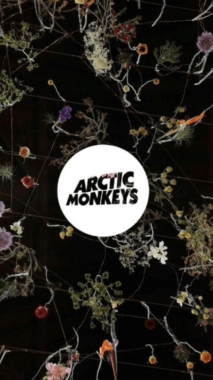 Arctic Monkeys Wallpapers - Top Free Arctic Monkeys ...