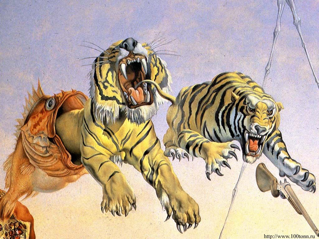 Salvador Dalí Wallpapers Top Free Salvador Dalí