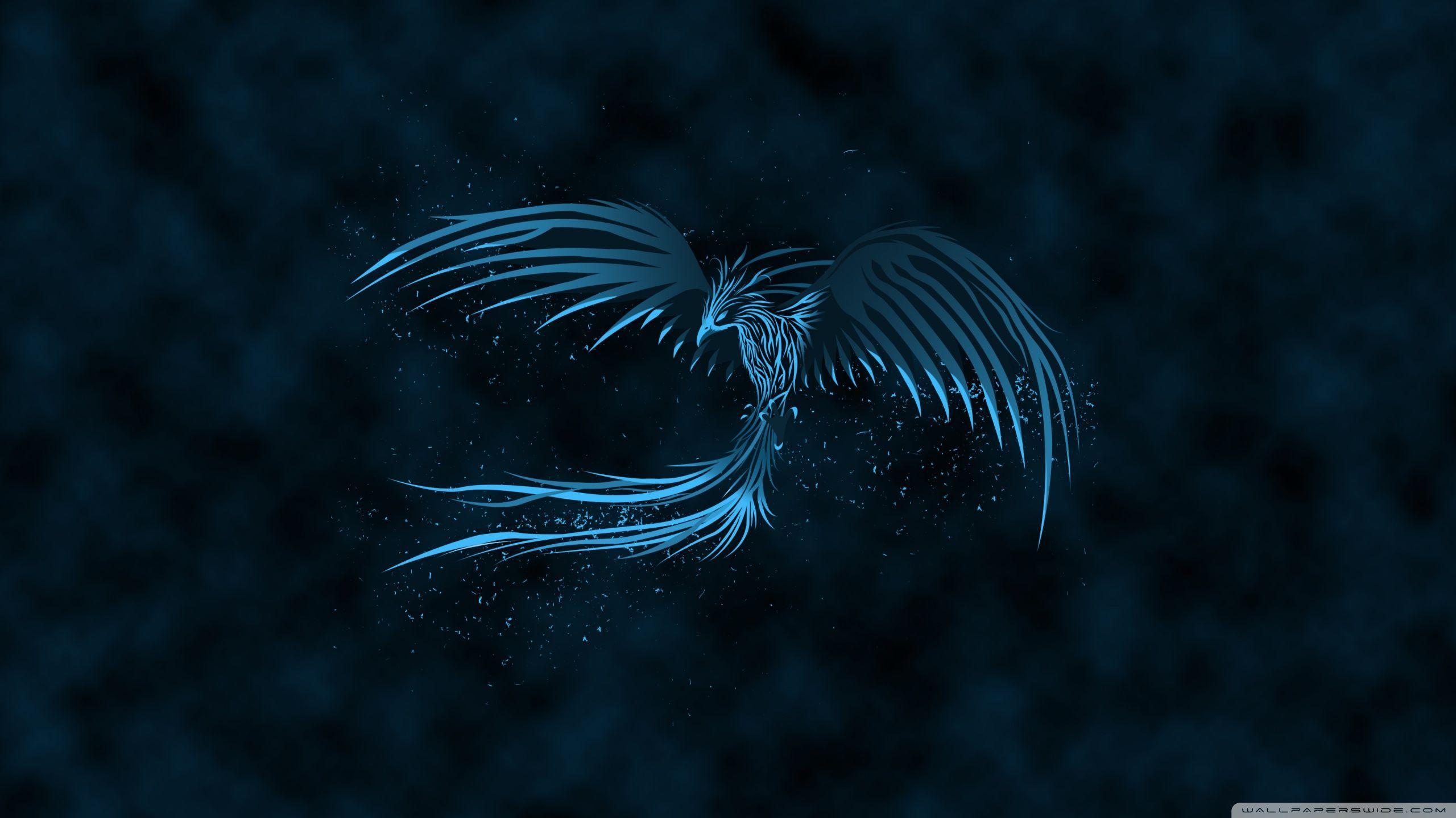 Hd phoenix wallpapers top free hd phoenix backgrounds wallpaperaccess - Fenix bird hd images ...