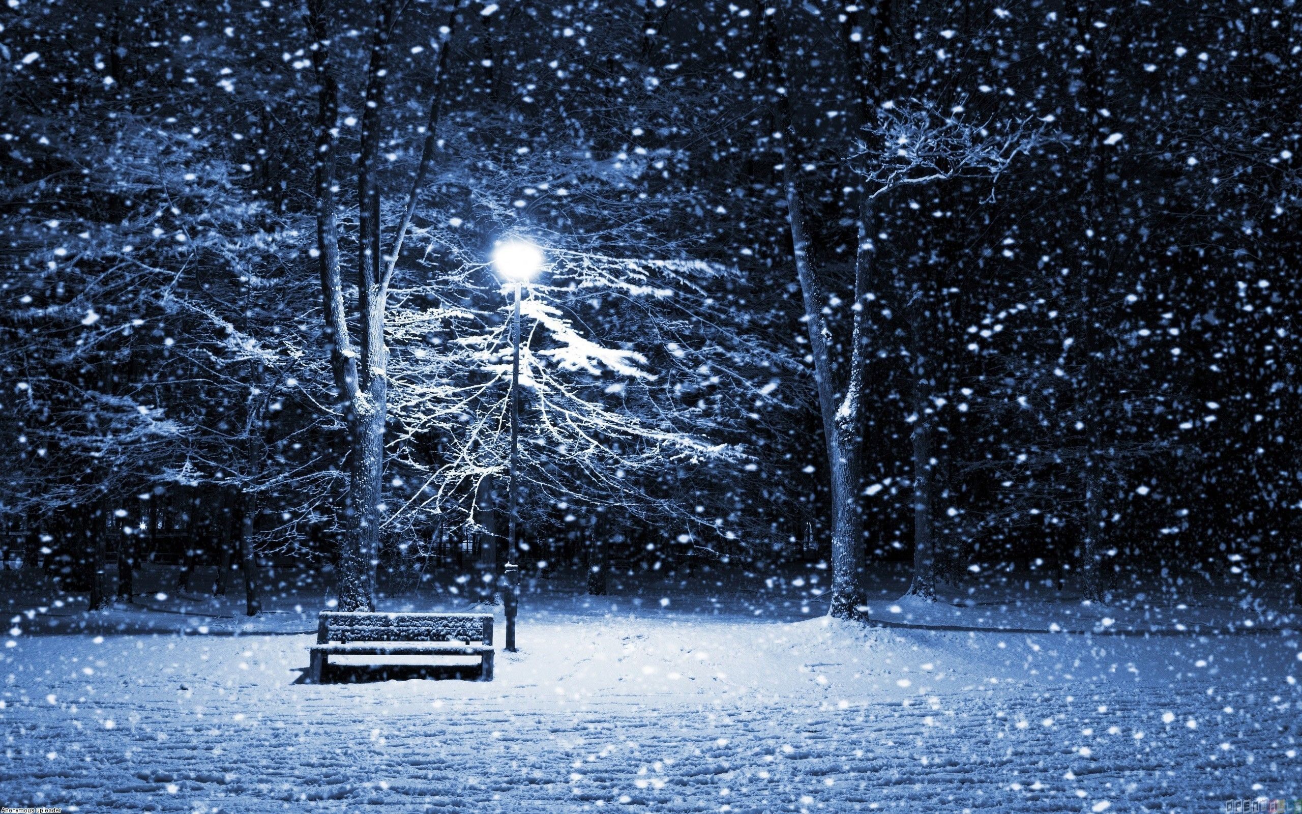 Snowfall Wallpapers Top Free Snowfall Backgrounds Wallpaperaccess
