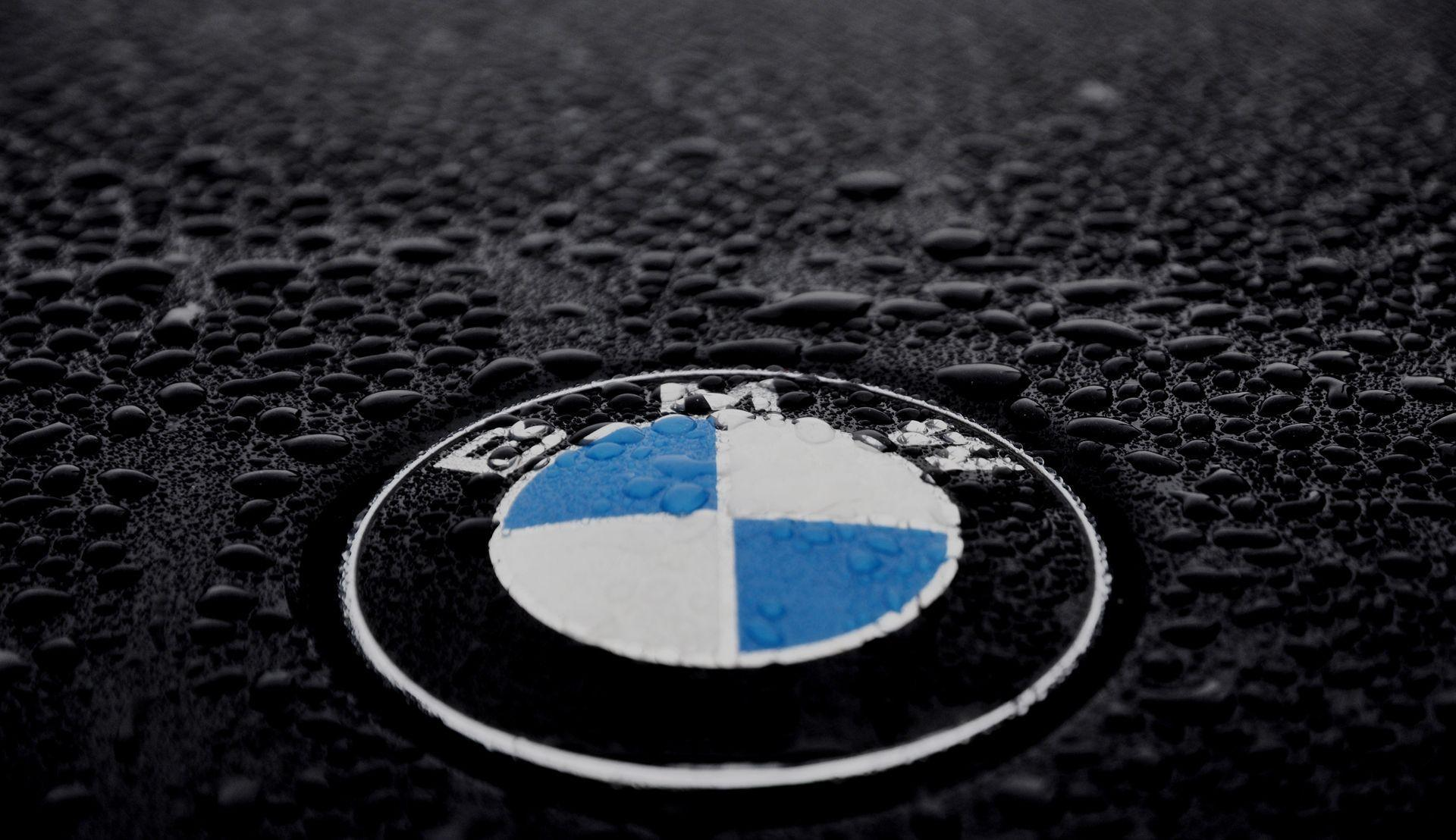Bmw Logo Wallpapers Top Free Bmw Logo Backgrounds Wallpaperaccess