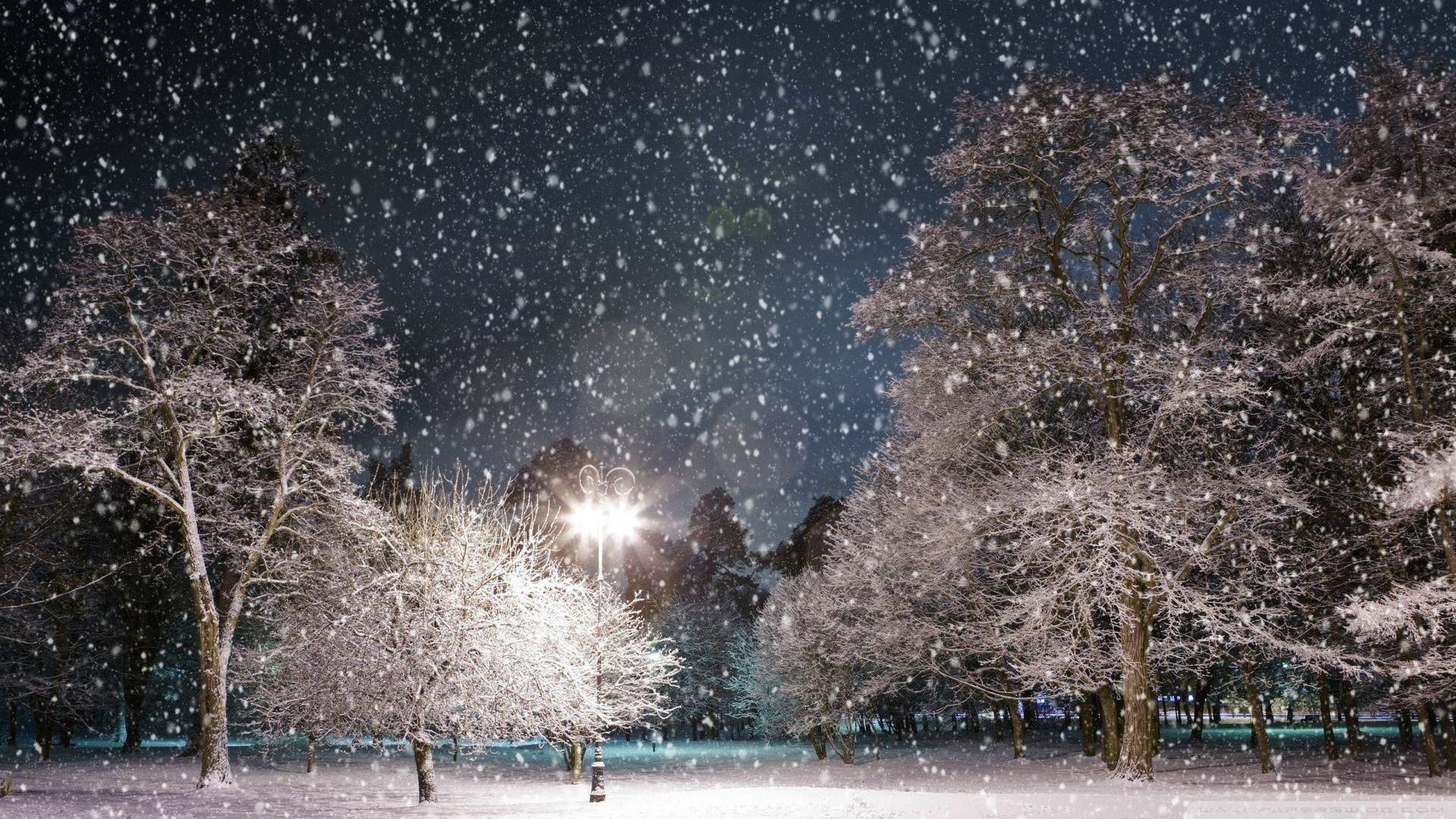 Night Snow Wallpapers Top Free Night Snow Backgrounds