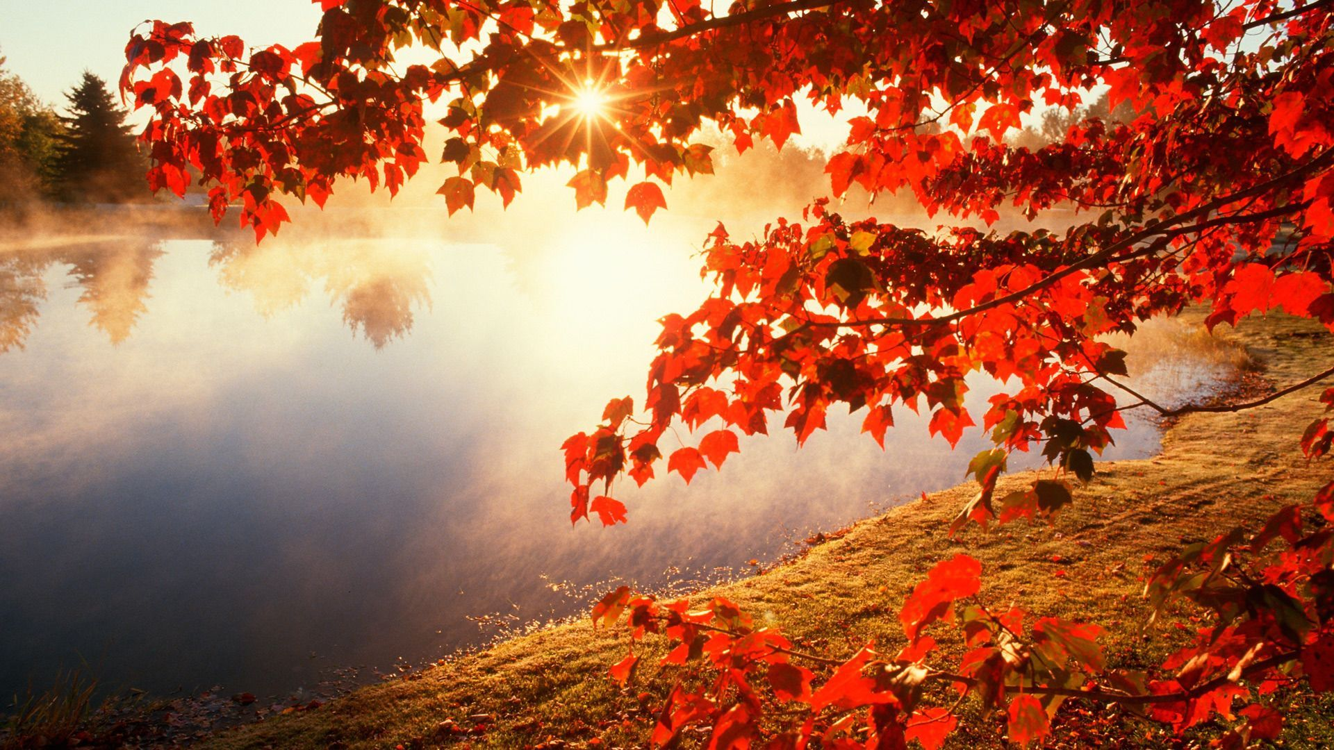 Best Autumn Wallpapers Top Free Best Autumn Backgrounds Wallpaperaccess