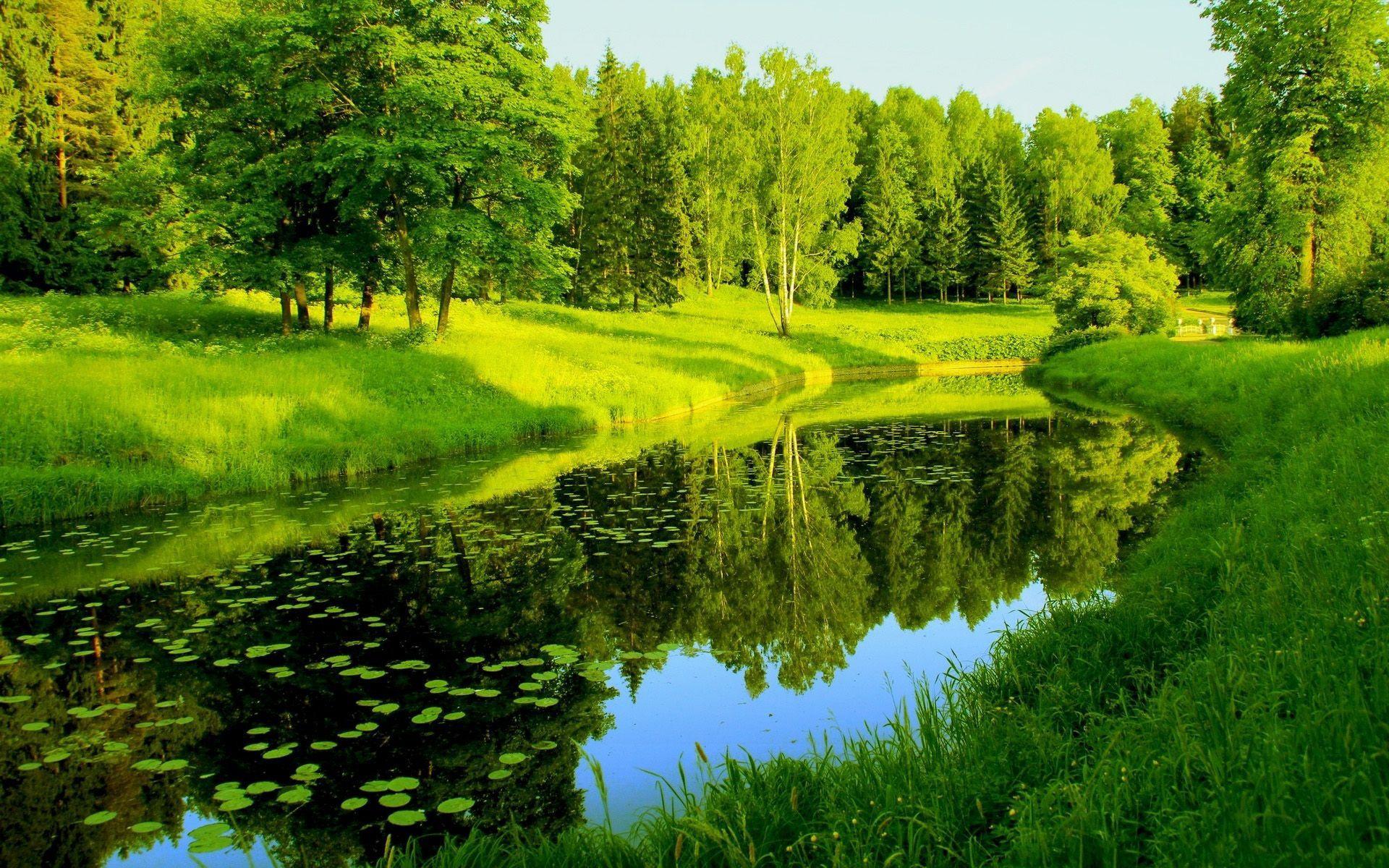 Green Landscape Wallpapers Top Free Green Landscape Backgrounds Wallpaperaccess