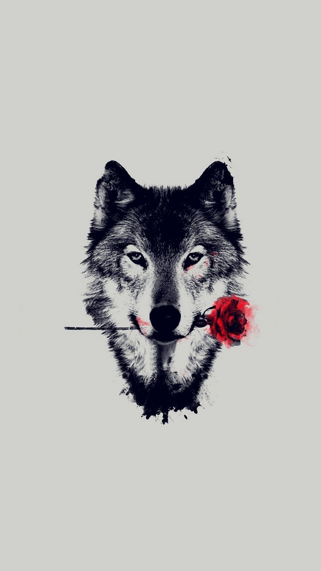Cute Abstract Wolf Wallpapers Top Free Cute Abstract Wolf