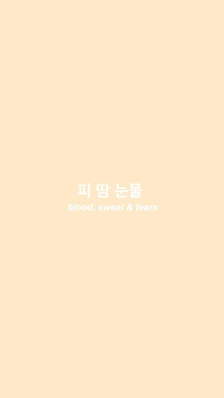 Kpop Aesthetic Wallpapers Top Free Kpop Aesthetic