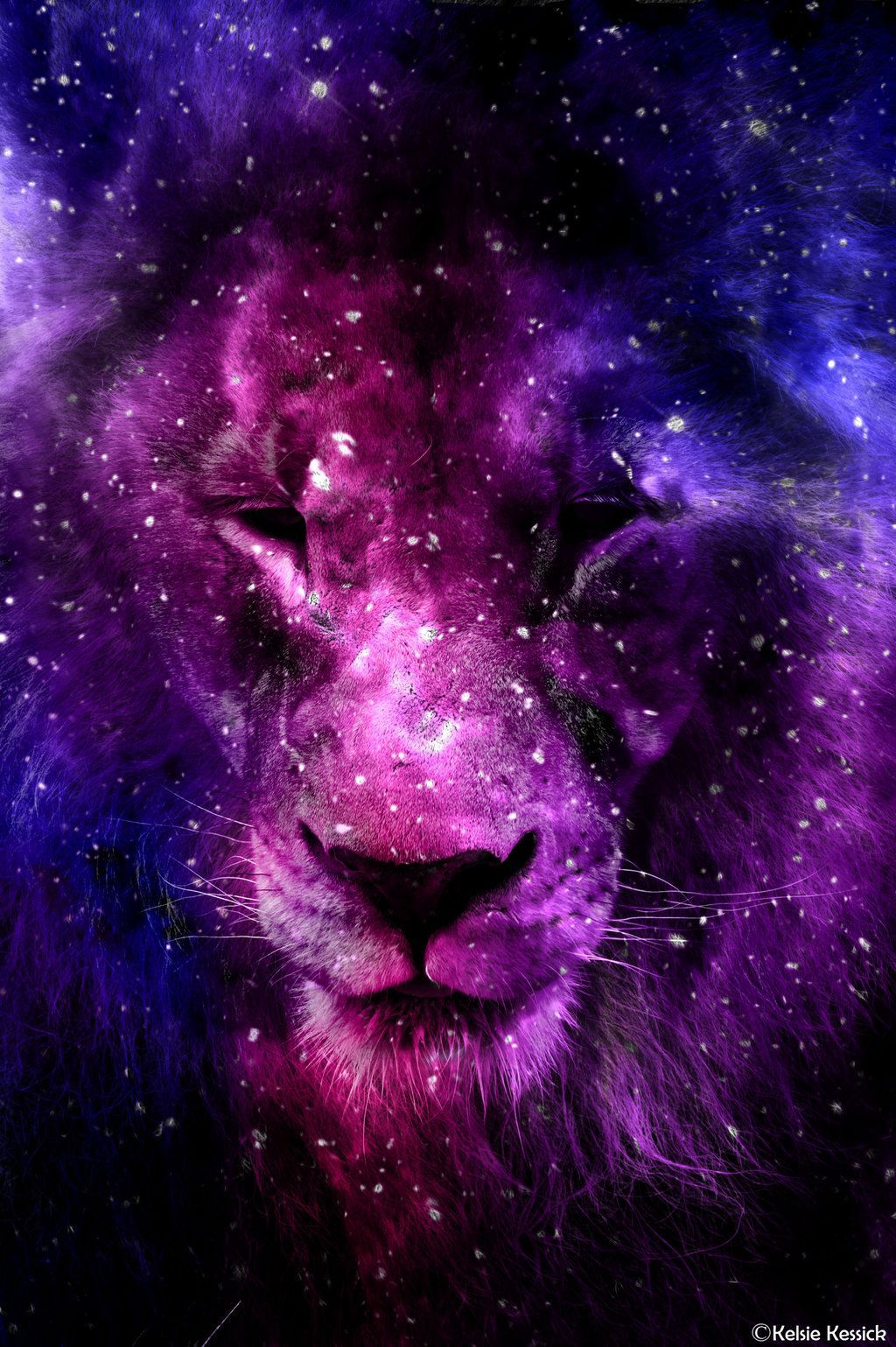 Galaxy Lion Wallpapers Top Free Galaxy Lion Backgrounds Wallpaperaccess