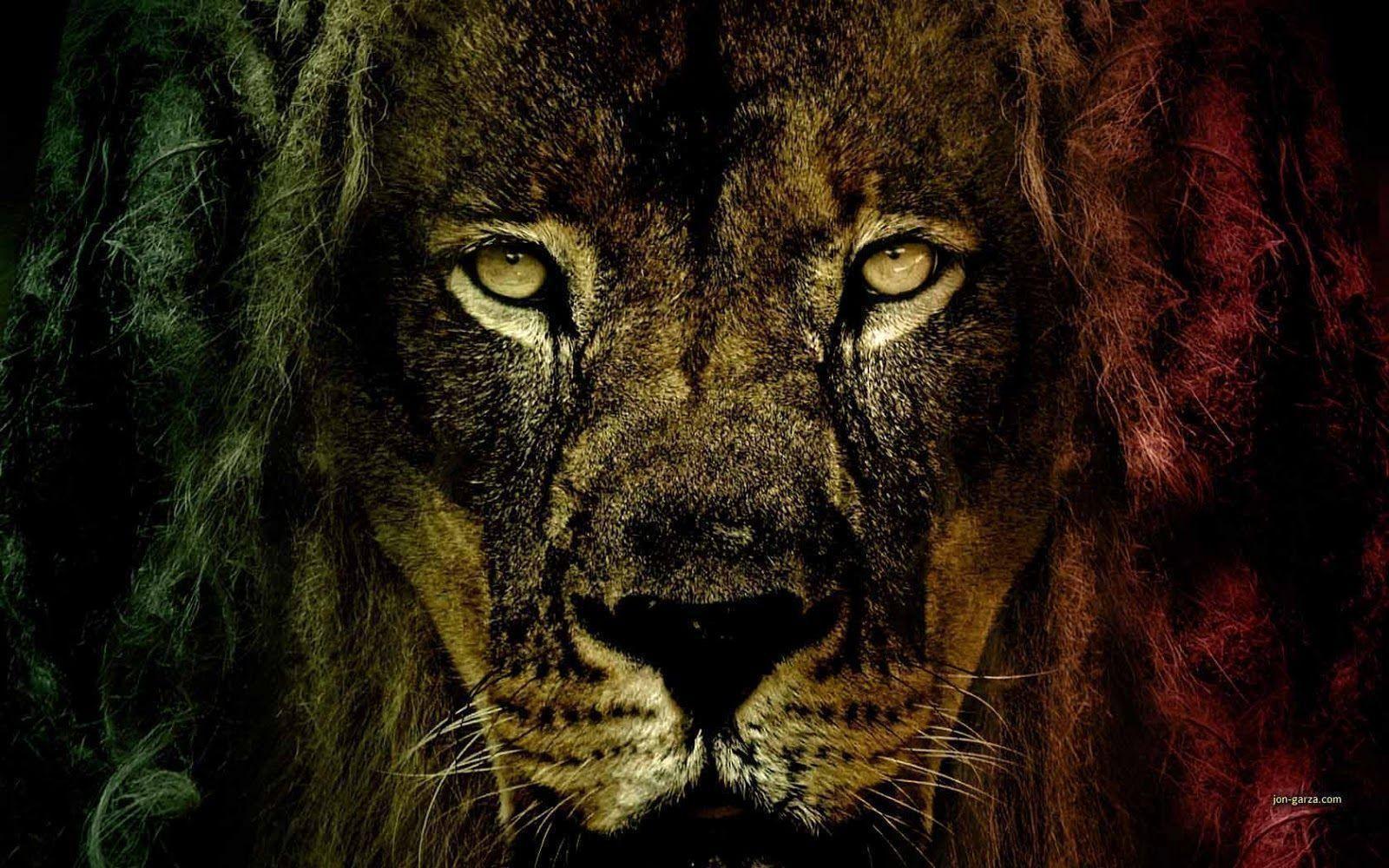 Rasta Lion Wallpapers Top Free Rasta Lion Backgrounds