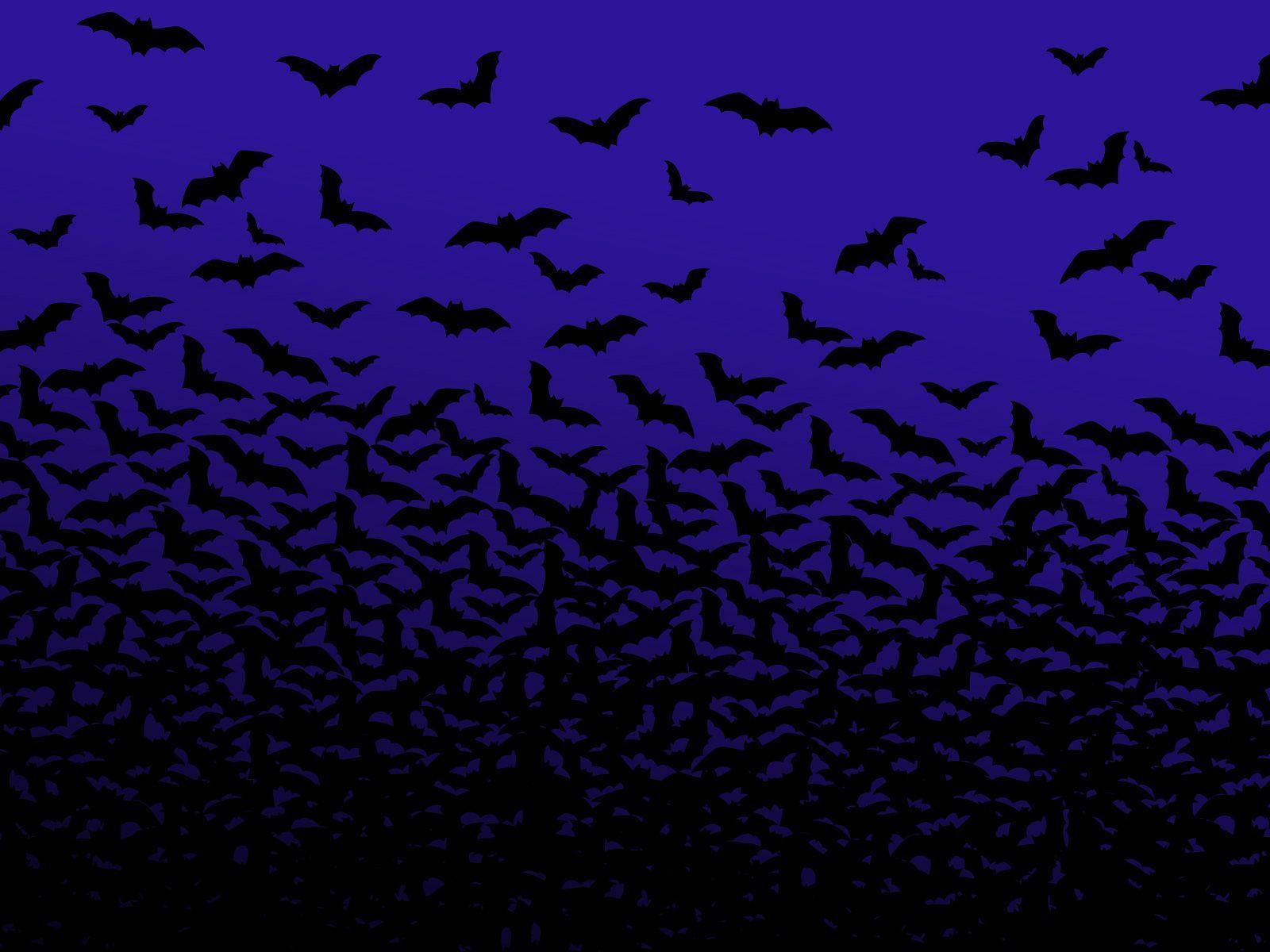 Halloween Bat Wallpapers Top Free Halloween Bat