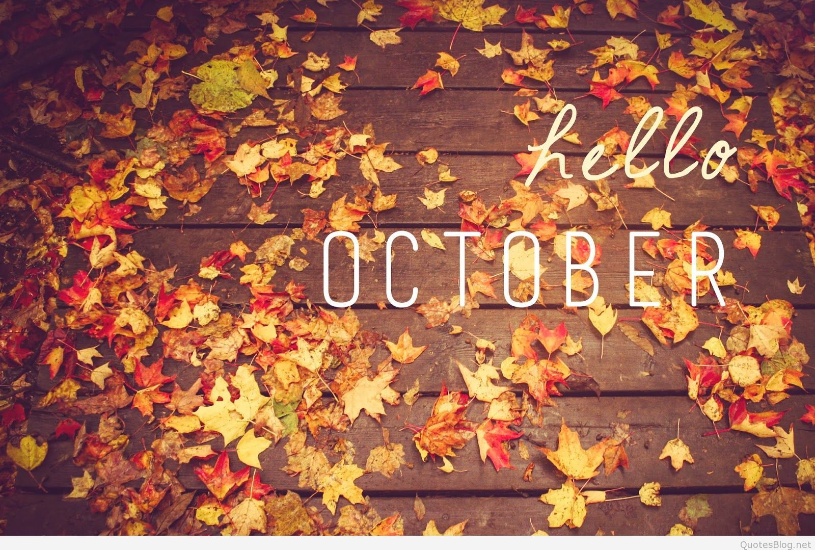 Hello October Fall Quotes Wallpapers Top Free Hello