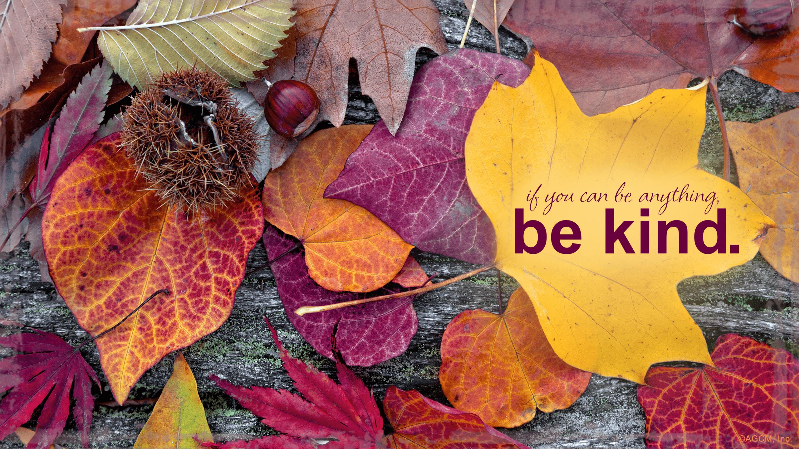 Hello October Wallpapers Top Free Hello October