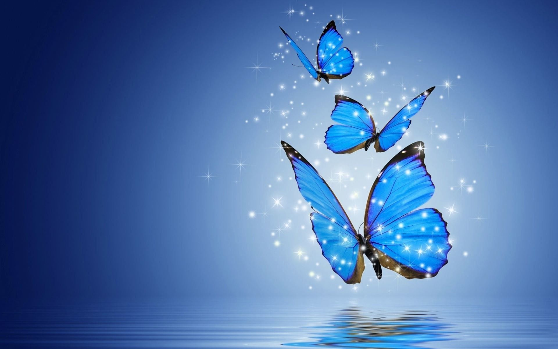 Butterflies Laptop Wallpapers Top Free Butterflies Laptop Backgrounds Wallpaperaccess
