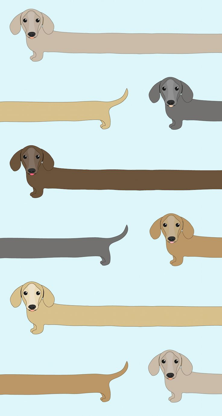 Kawaii Dog Wallpapers Top Free Kawaii Dog Backgrounds