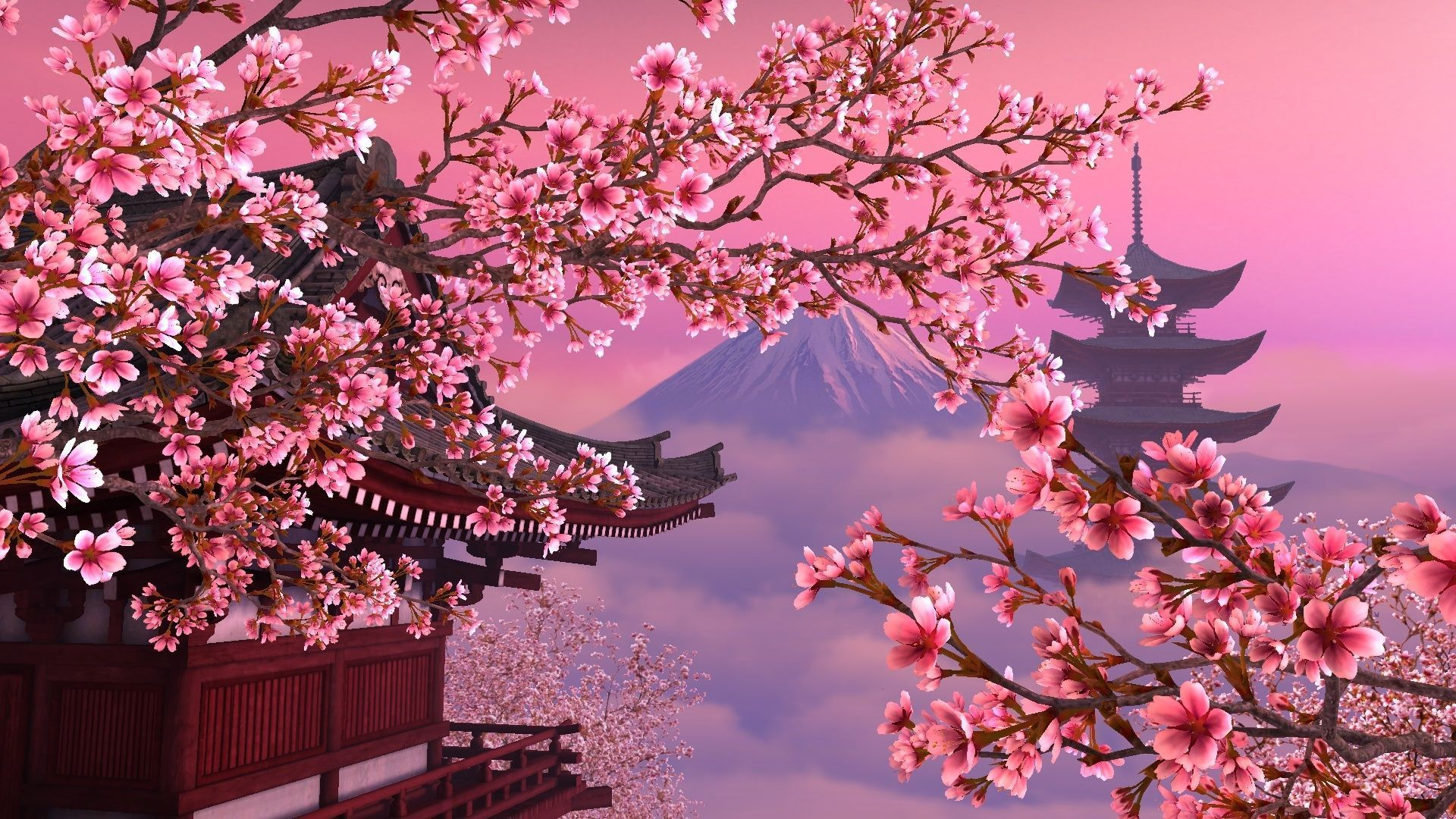 View Cherry Blossoms Wallpaper Aesthetic Wallpapers