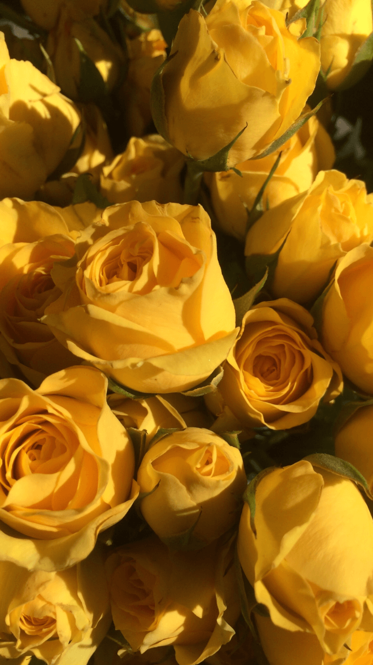 download yellow aesthetic flowers png png gif base download yellow aesthetic flowers png
