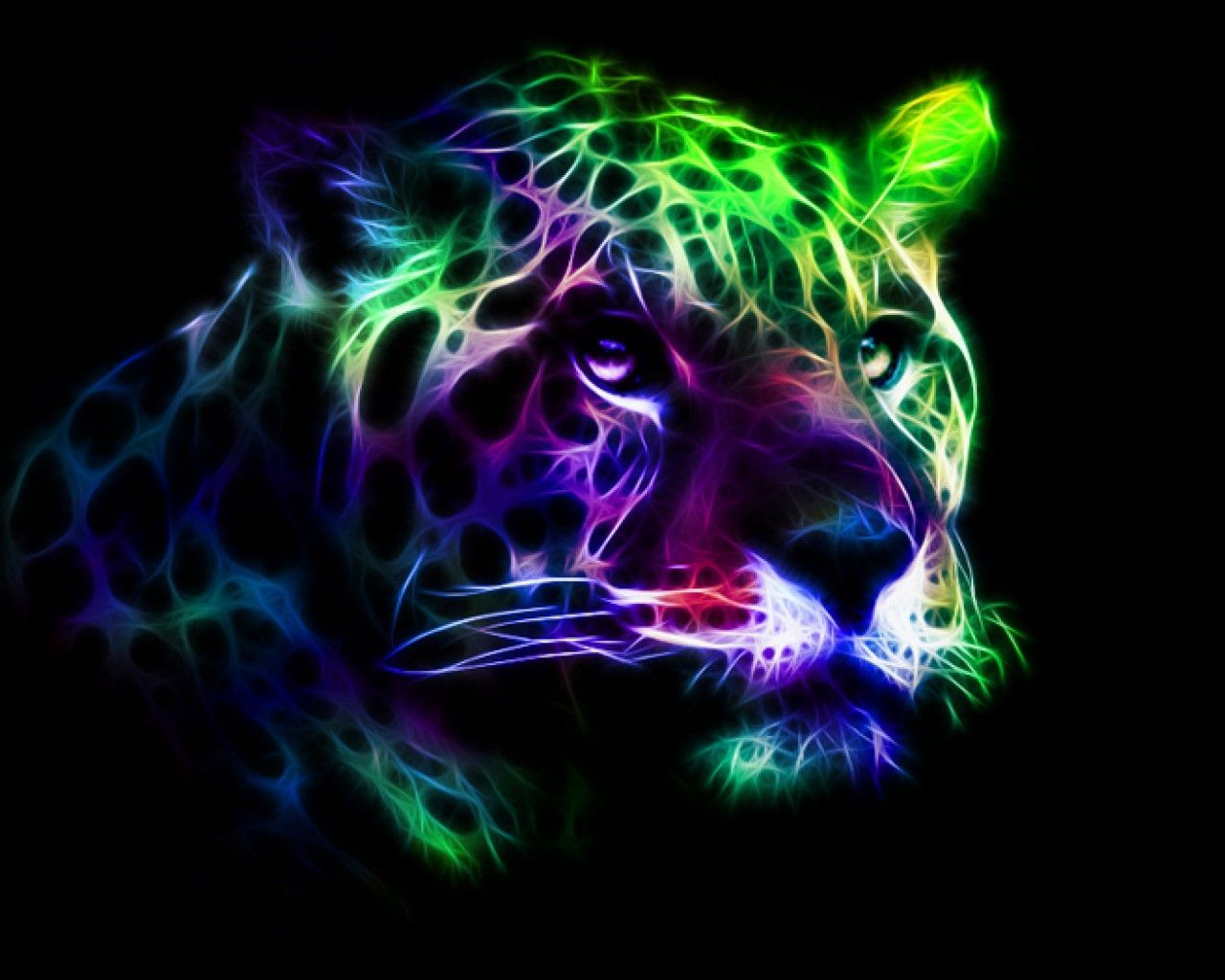 Neon Animal Wallpapers Top Free Neon Animal Backgrounds Wallpaperaccess