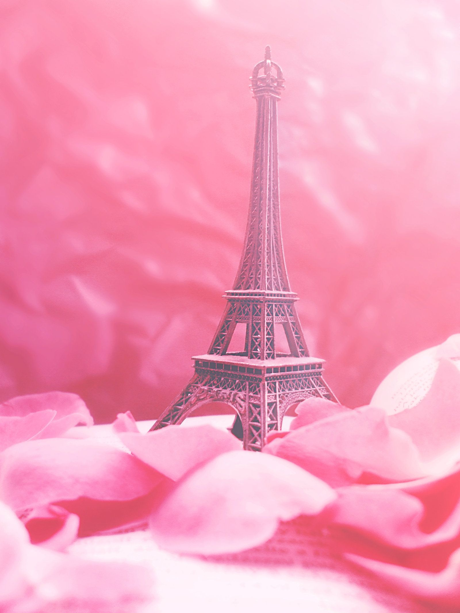 Pink Paris Iphone Wallpapers Top Free Pink Paris Iphone Backgrounds Wallpaperaccess