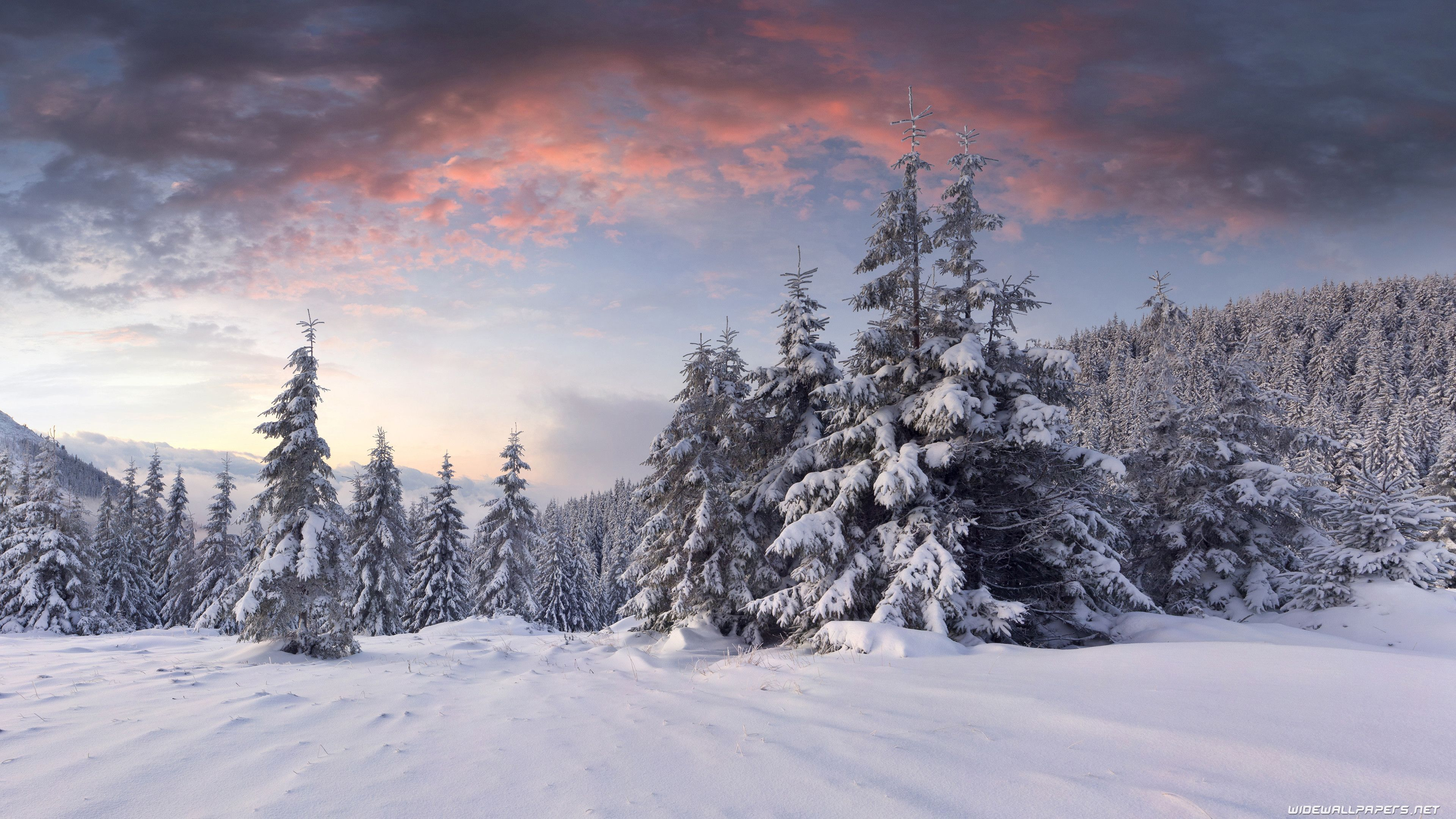 Ultra Hd Winter Wallpapers Top Free Ultra Hd Winter