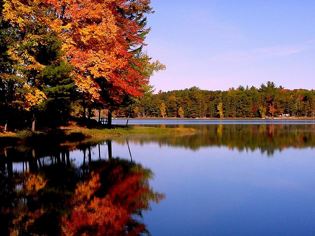Fall Scenes Wallpapers Top Free Fall Scenes Backgrounds
