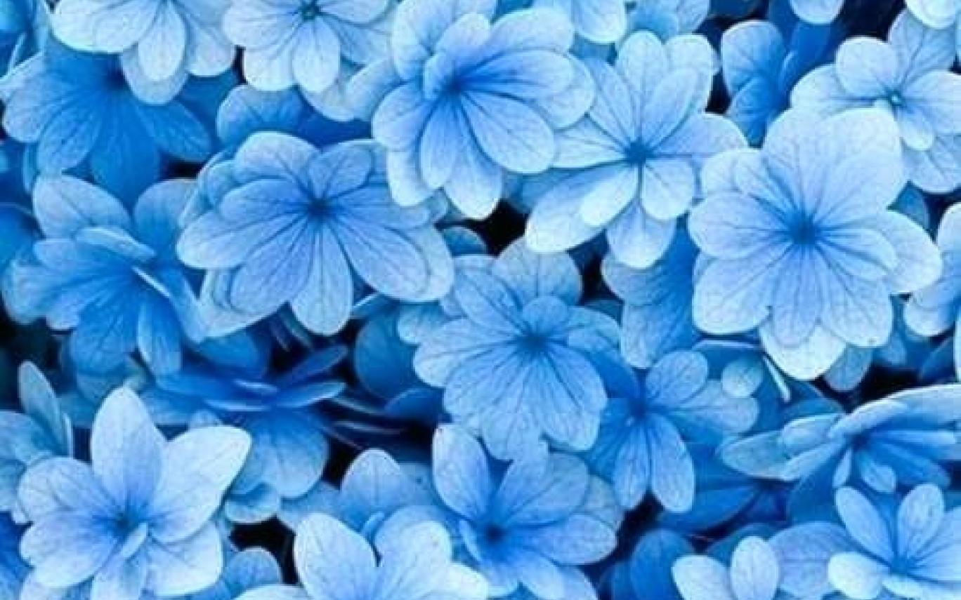 light blue aesthetic wallpapers