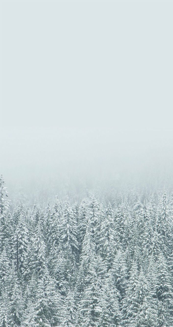 Winter Aesthetic Wallpapers Top Free Winter Aesthetic