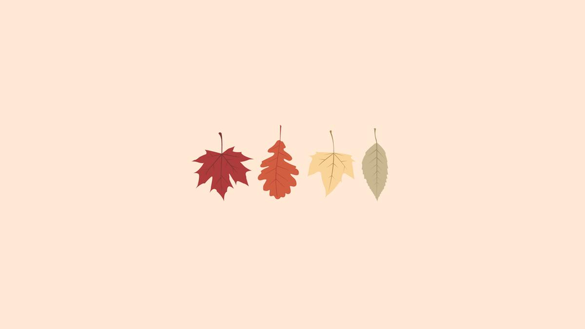 Autumn Aesthetic Wallpapers Top Free Autumn Aesthetic