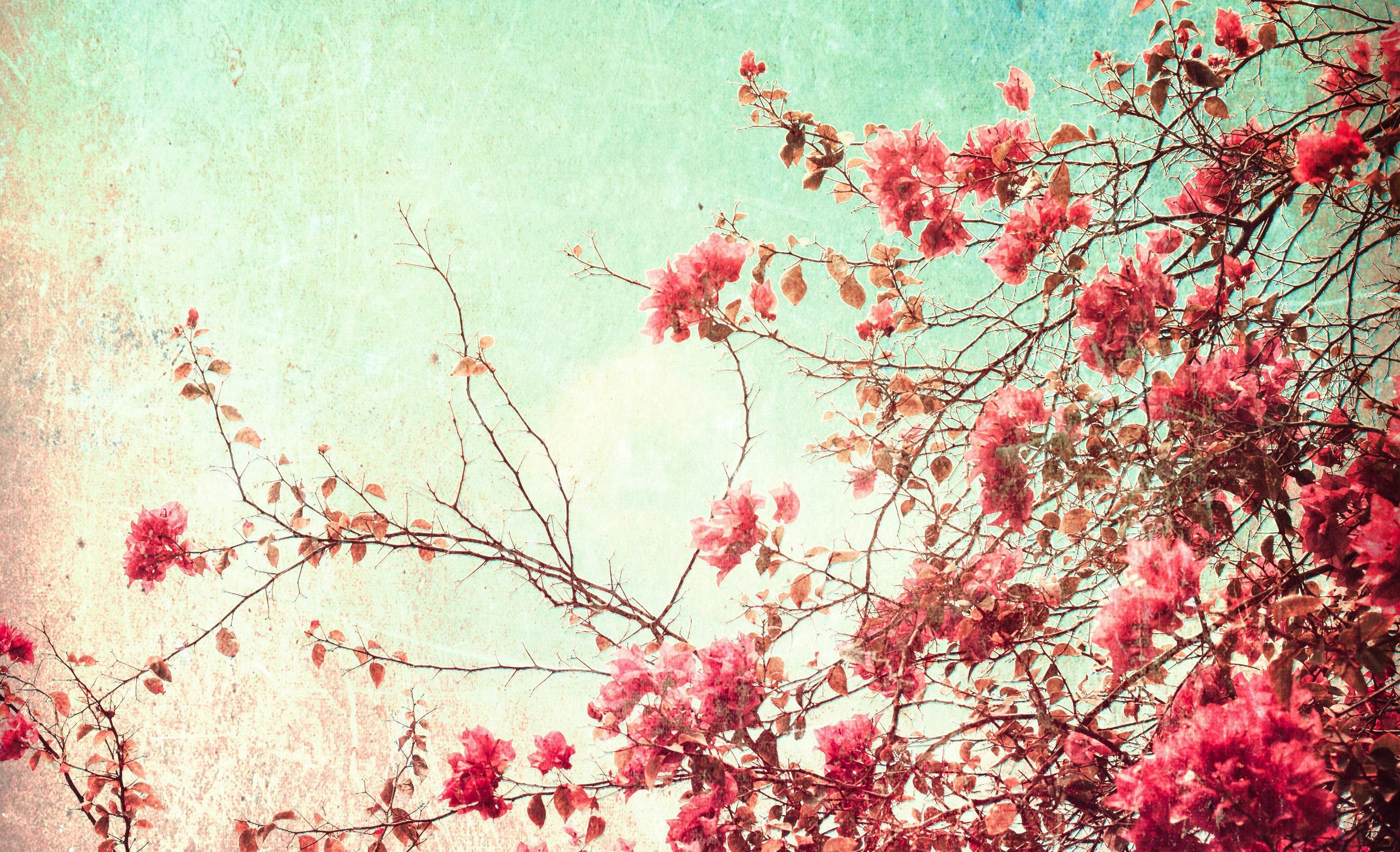 Vintage Aesthetic Pc Wallpapers Top Free Vintage Aesthetic Pc Backgrounds Wallpaperaccess