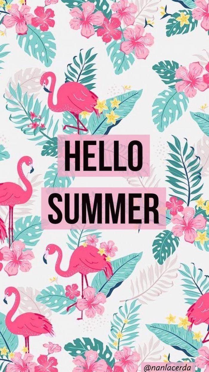 Cute Summer Wallpapers Top Free Cute Summer Backgrounds Wallpaperaccess