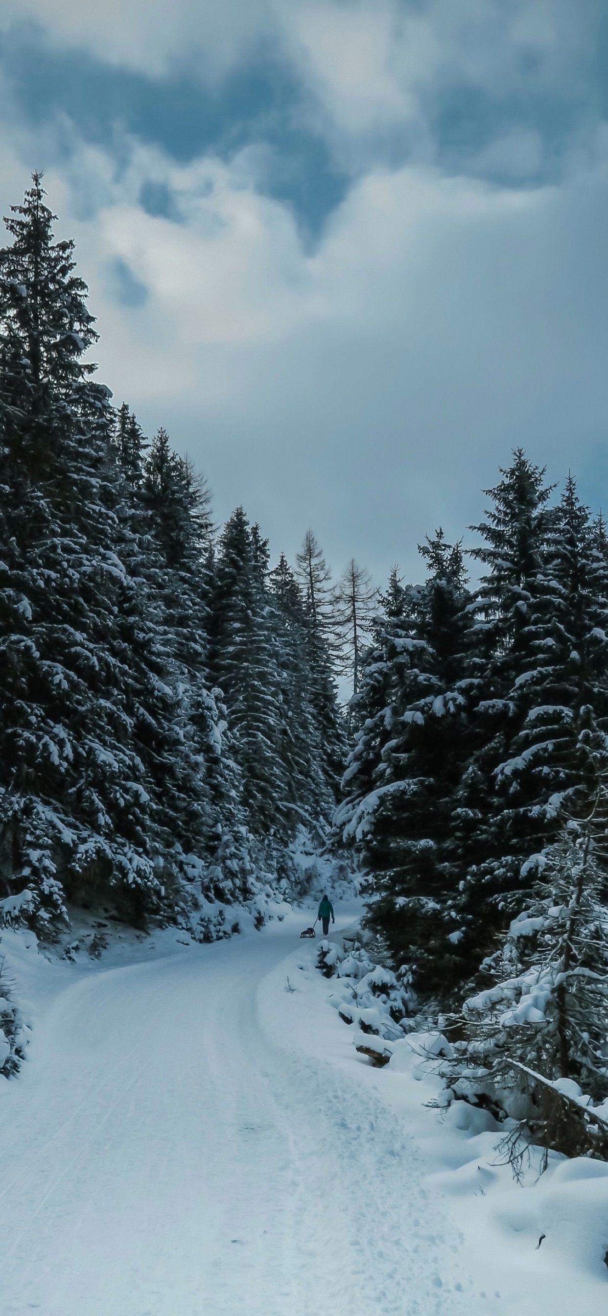 Winter iPhone Wallpapers , Top Free Winter iPhone