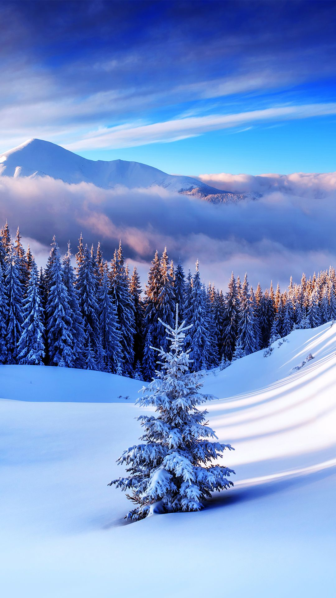 Winter Iphone Wallpapers Top Free Winter Iphone Backgrounds Wallpaperaccess