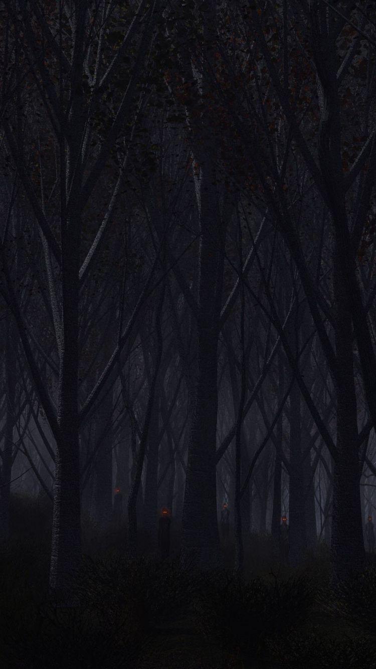 Dark blue : Dark Forest Wallpaper Hd ...