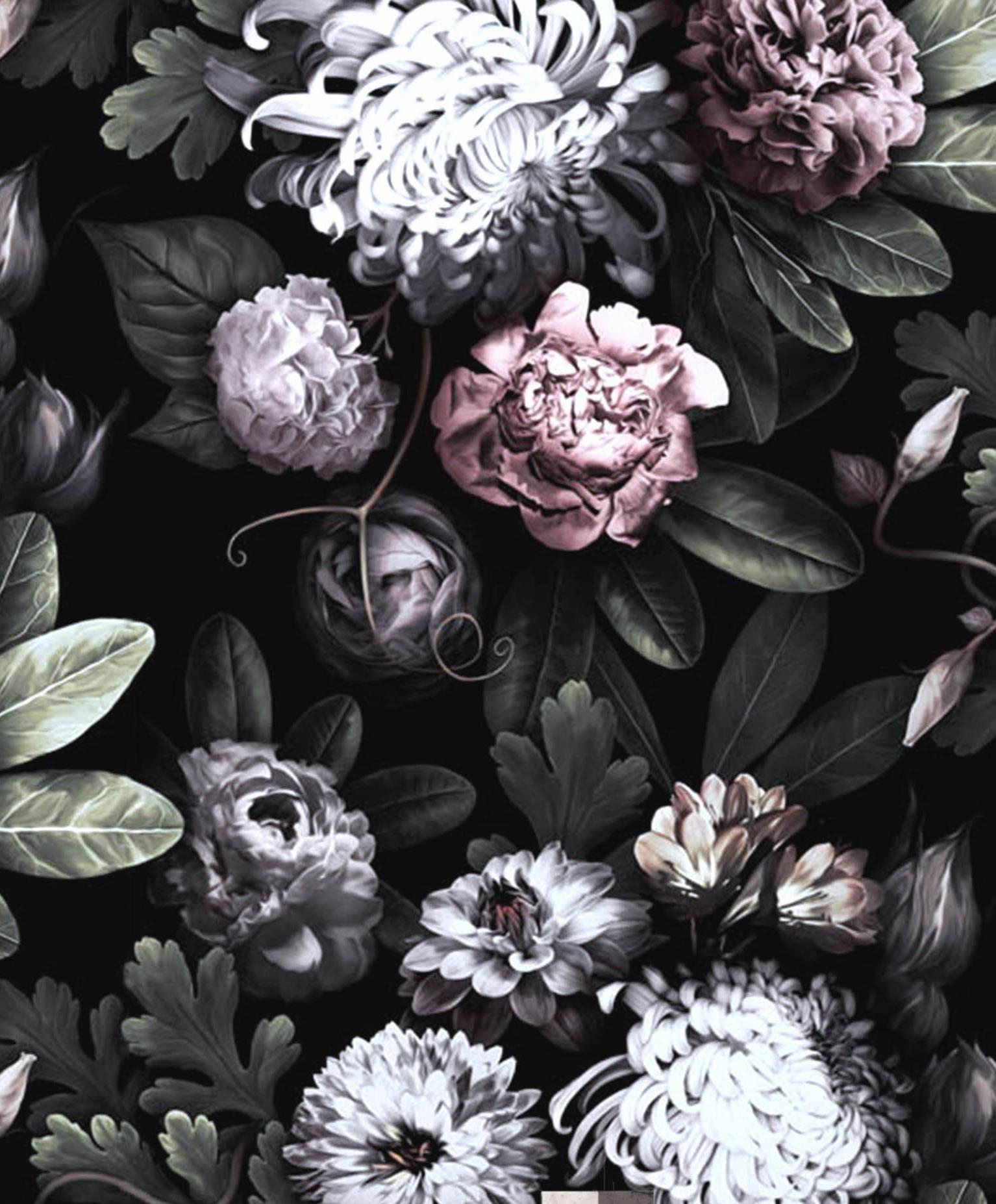 Black Floral Wallpapers Top Free Black Floral Backgrounds