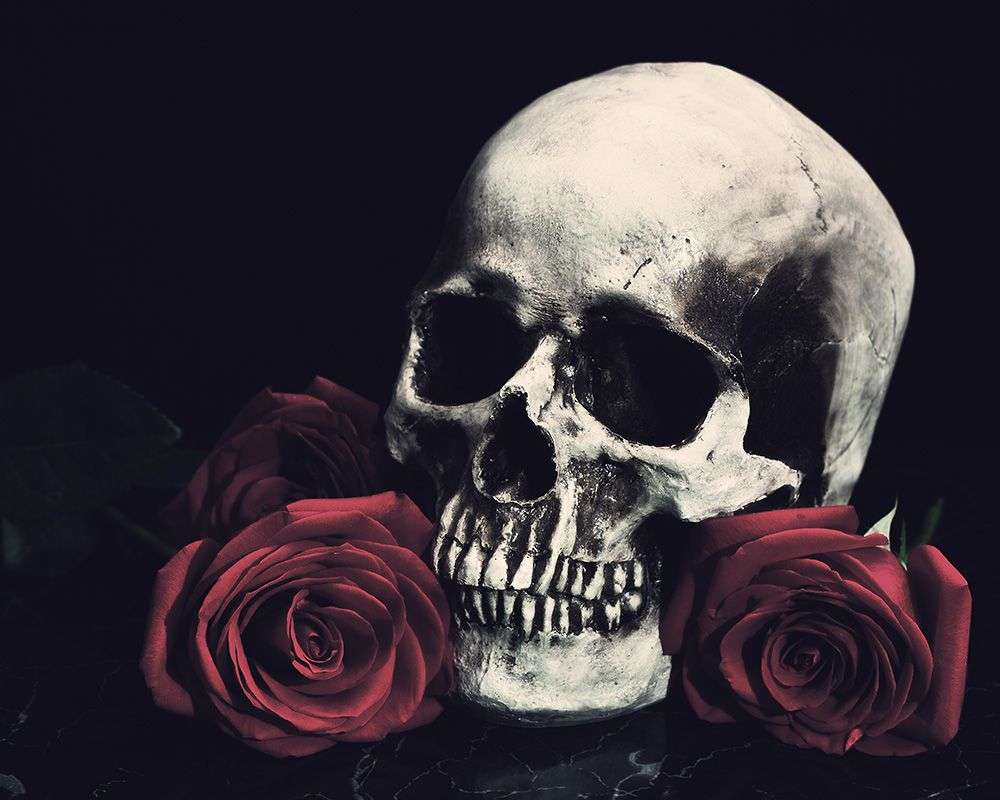 Black Skull With Rose Wallpapers Top Free Black Skull With Rose Backgrounds Wallpaperaccess