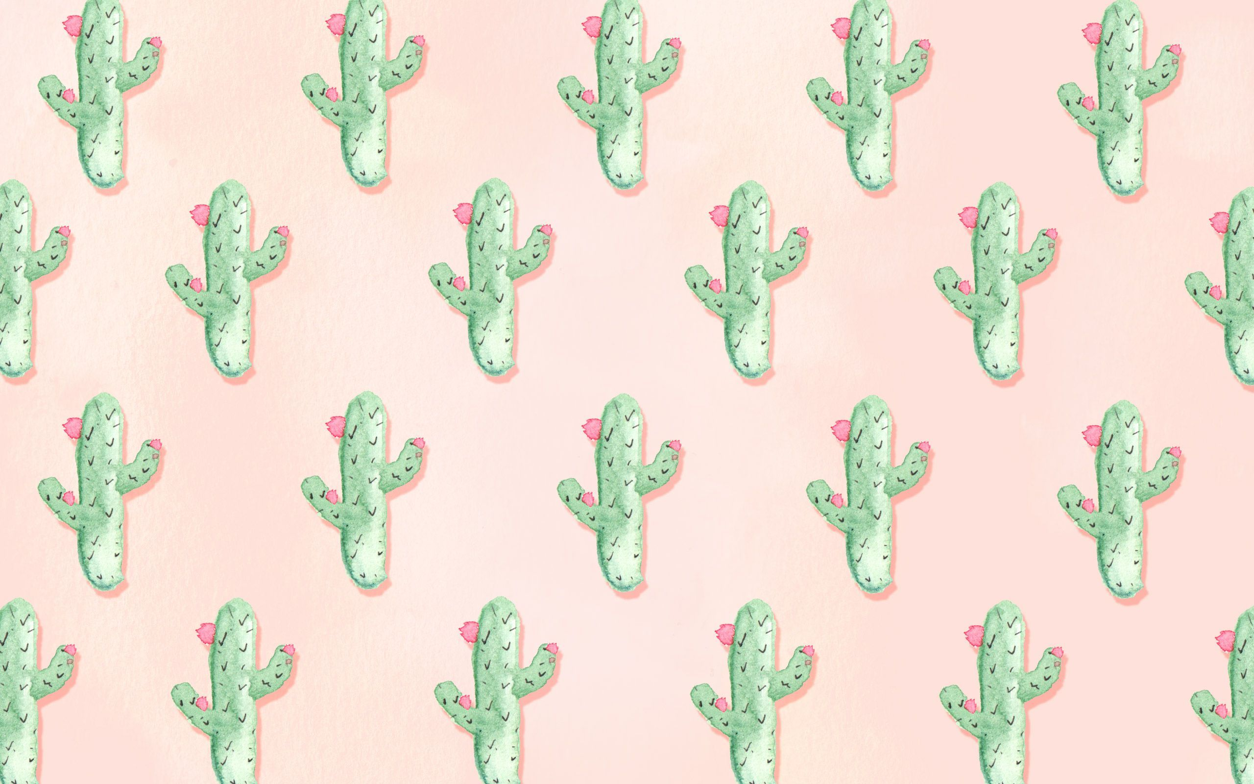 Aesthetic Cactus Wallpapers Top Free Aesthetic Cactus Backgrounds Wallpaperaccess