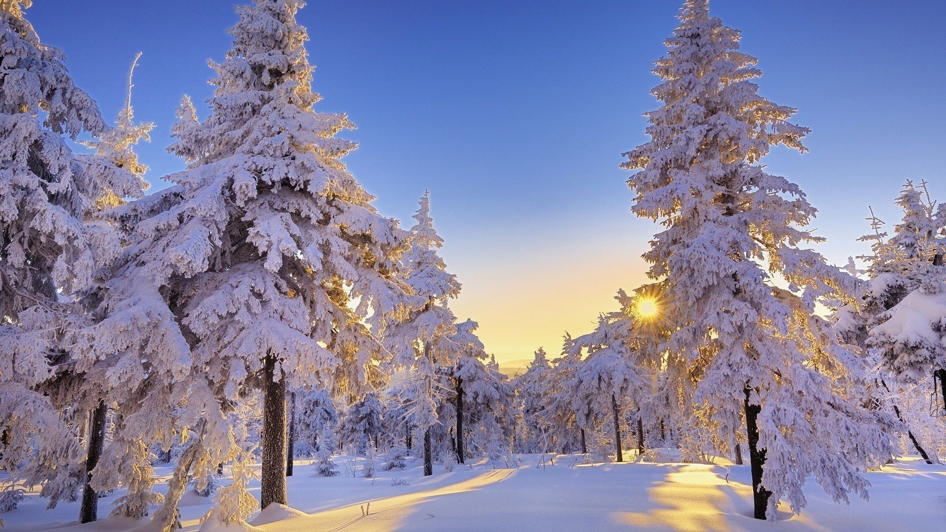 Winter Computer Wallpapers - Top Free ...