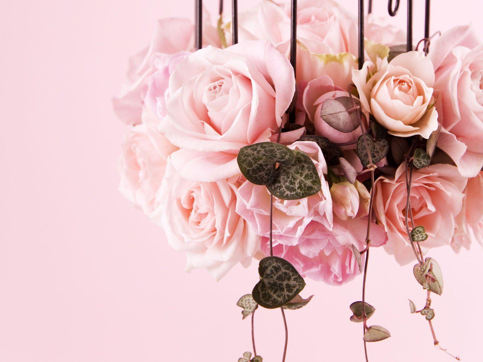 Wedding Floral Wallpapers Top Free Wedding Floral