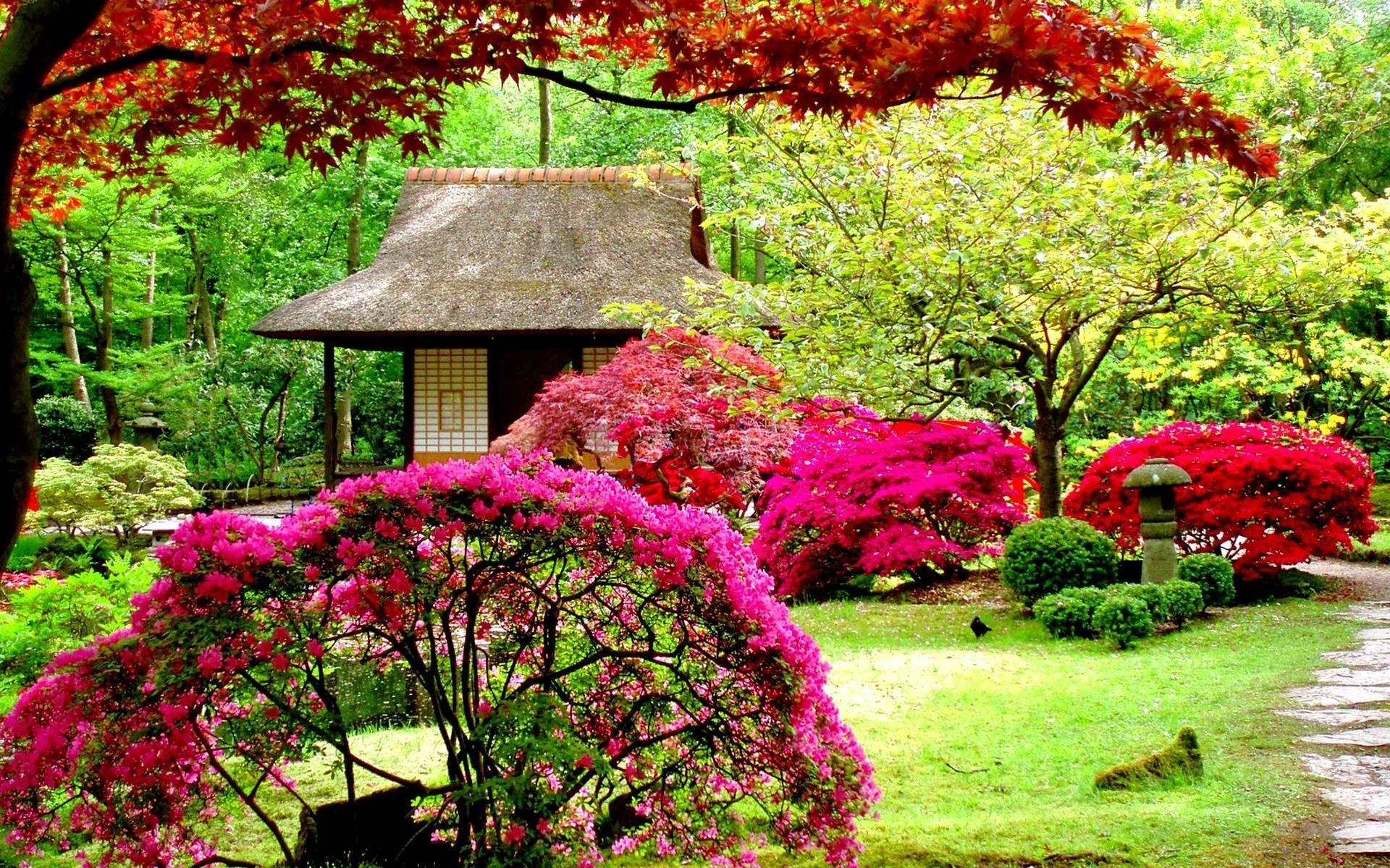Hd Garden Wallpapers Top Free Hd Garden Backgrounds Wallpaperaccess